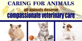 Caring For All Animals