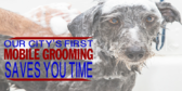 Mobile Pet Grooming