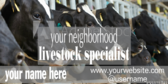 Supply and Seed Livestock Specialist